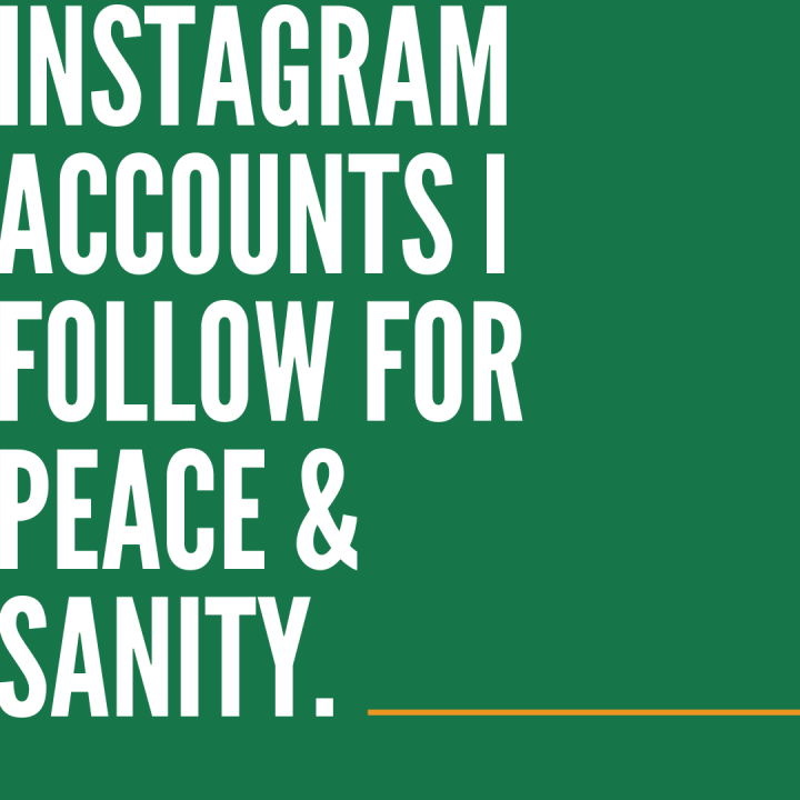 Instagram accounts I follow for peace and sanity.